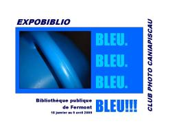 10 ExpoBiblio Bleu_catalogue