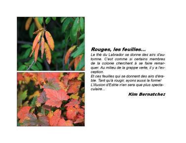 16 ExpoBiblio L'automne 2010 KB