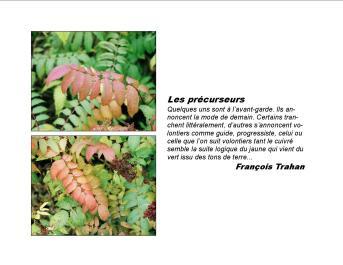 5 ExpoBiblio L'automne 2007 FT