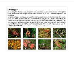 5 ExpoBiblio L'automne_B intro