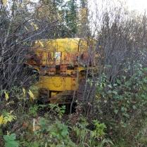 En otage Acteur des travaux de construction de la route, la forêt l'a fait prisonnier. La perpétuité, rien de moins. Ça lui apprendra à chambouler le décor, avec et sans jeu de mot...
