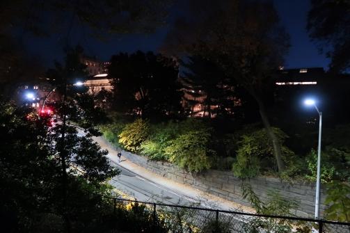 IMG_0345_4x6 Central Park 16