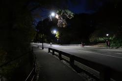 IMG_0346_4x6 Central Park 16