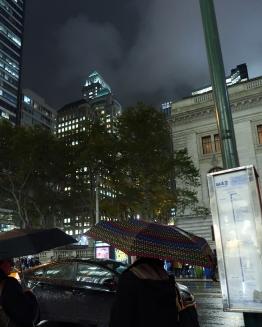IMG_0683_4x6 NY16 rain